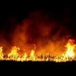 Ismét száraz növényzetet égettek a balkán szubkultúrát kedvelők