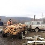 Illegális favágás miatt büntettek