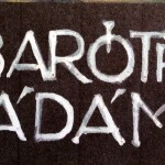Baróthi Ádám egyéni kiállítása a Bernády Házban.