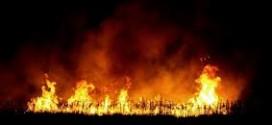 Még nem tudják, hogy mi okozta a nagyváradi tüzet