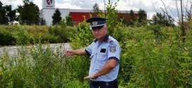 Magyarói nőt talált el egy szolgálati lőfegyverből kilőtt éles töltény