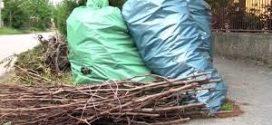 Összegyűjtik a növényi hulladékot Szászrégenben.